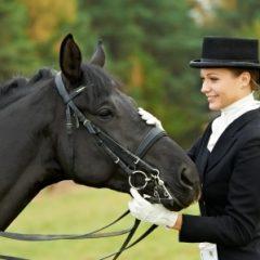 Pferdesport – Europameisterschaft