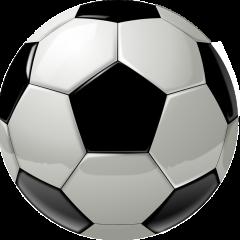 Euro 2016: Qualifikationsspiele